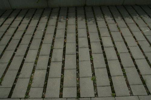 090-stuttgart-scharnhauser-park-dlazba-se-sirokym-sparovanim-veronika-kalnikova