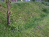 039-appenzell-serie-zasakovacich-prulehu-veronika-kalnikova