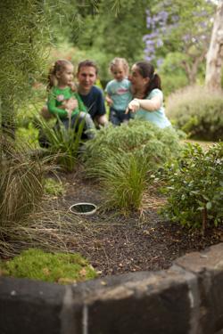 Komunitní dešťová zahrada. Zdroj: http://www.melbournewater.com.au/getinvolved/protecttheenvironment/raingardens/Pages/Why-build-a-raingarden.aspx