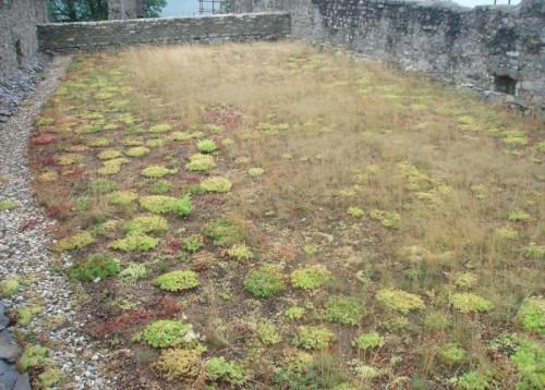 Zelená střecha na hradě Hukvaldy
