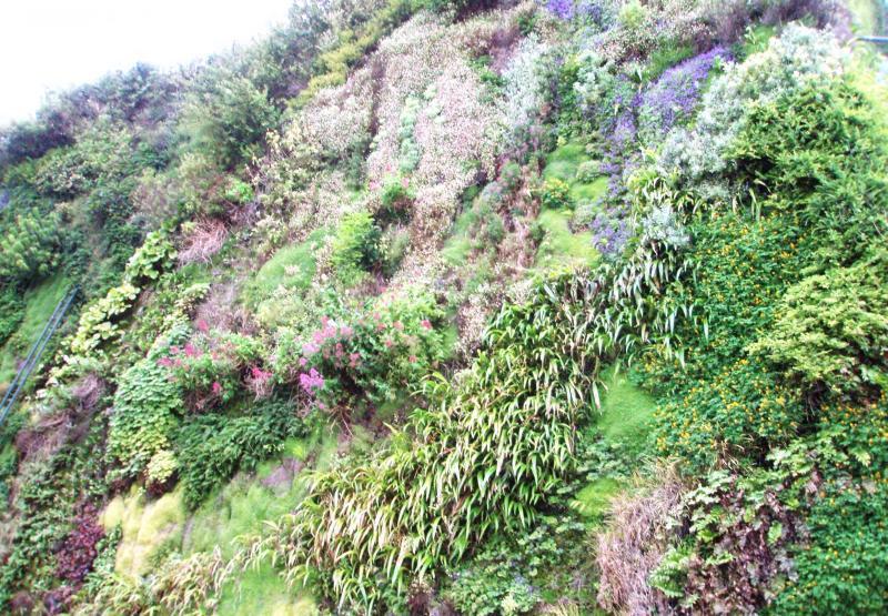 Vertikální zahrady ve městě Aviqnon