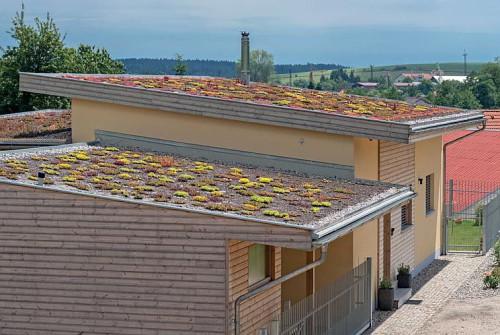 zelena-strecha-novostavba