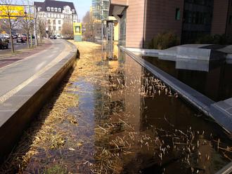 Postupimské náměstí. Dešťovou vodu není nutné poslat hned do kanálu. Je možné ji nechat vsáknout na místě. Licence | Některá práva vyhrazena Foto | Jacob Christensen / Flickr