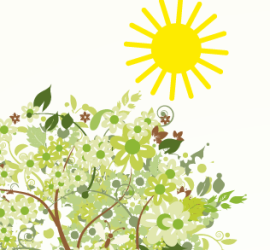 Slunce-strom