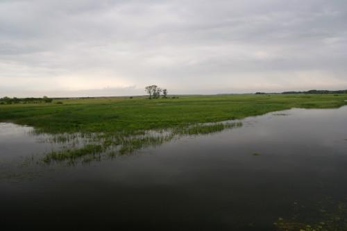 Řeka Biebrza s okolní nivou, Polsko. Ilustrační obrázek (Autor fotografie: Veronika Kalníková).