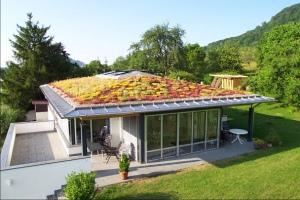 Ilustrační obrázek. Vegetační střecha. Zdroj: http://www.tzb-info.cz/4921-zaklady-spravneho-navrhovani-zelenych-strech