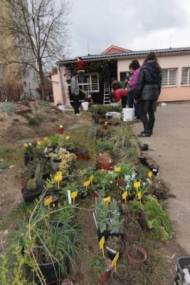 Žáci a učitelé sázejí rostliny do spodní části vertikální zahrady.