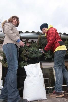 Se sázením rostlin pomáhají také organizátorky projektu z Ekocentra Koniklec.